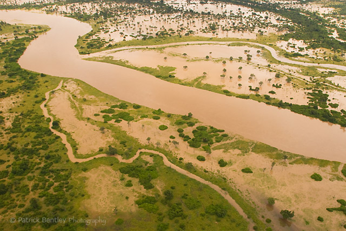 The Luangwa River floods and our river safaris are discontinued.