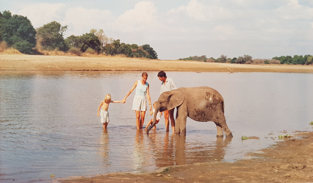 The Coppinger family splashing about with their elephant in the Luangwa River in Zambia