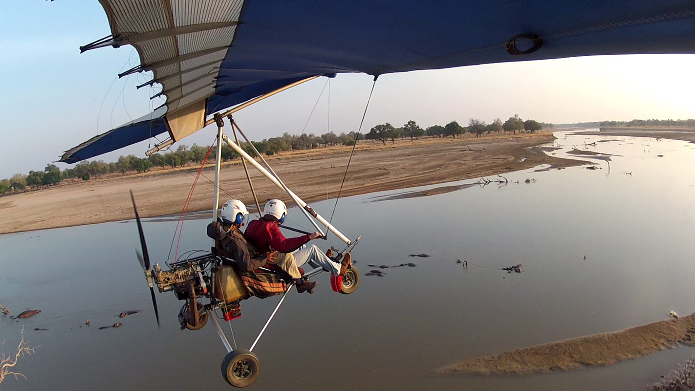 The Remote Africa Safaris Microlight gliding over a group of hippopotamus bathing in the Luangwa river in Zambia